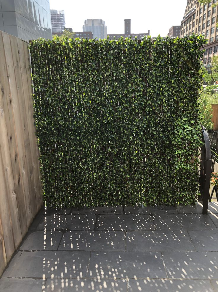 Patio Makeover: The Easiest DIY Green Wall Ever   Green ... on Green Wall Patio id=75622