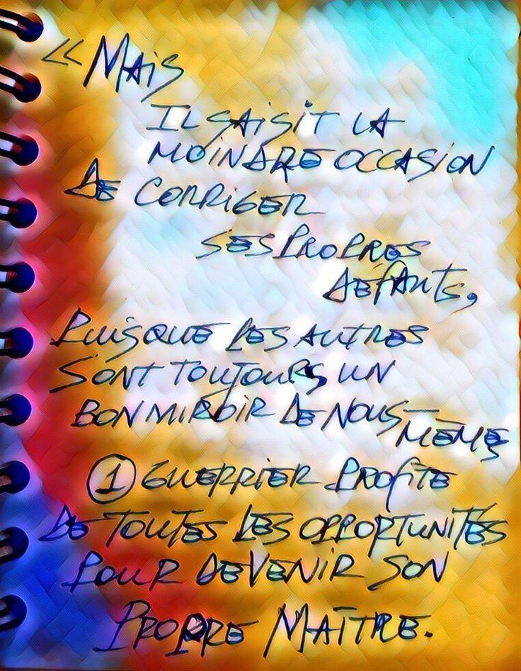 Mais il saisit la moindre occasion de corriger ses propres défauts, puisque les autres sont toujours un bon miroir de nous-mêmes. Un guerrier profite de toutes les opportunités pour devenir son propre maître. #paulocoelho #guerrierdelalumiere #page30 #defaut #maitre #jnfqp