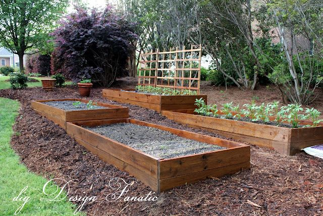 Raised bed garden on a slope