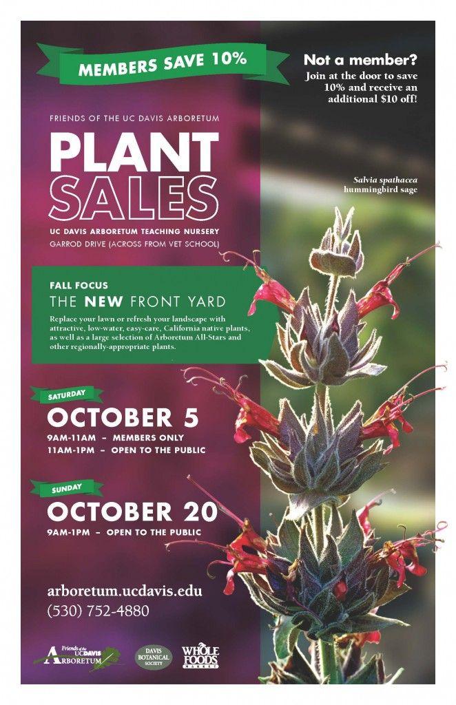 32 best images about Plant Sale Ideas on Pinterest ...