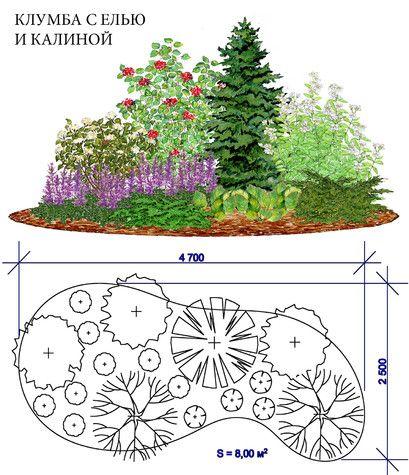 Проект: Клумба с елью и калиной — КЛУМБАshop — MyHome.ru