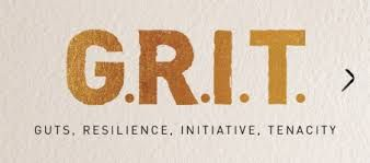 growth mindset and grit - Google Search