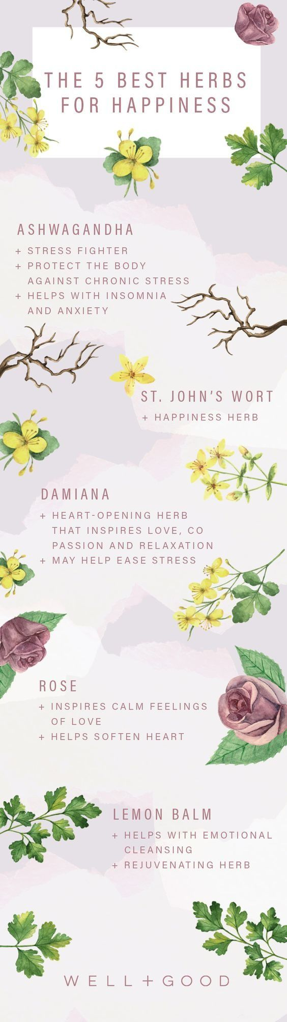 Certain plants can be seriously powerful mood lifters. Herbalist and integrative health guide Rachelle Robinett teaches the herb-curious how to inspire more energy, better sleep, and even lucid dreaming. Find out which herbs will bring that extra ounce of happiness into your day.