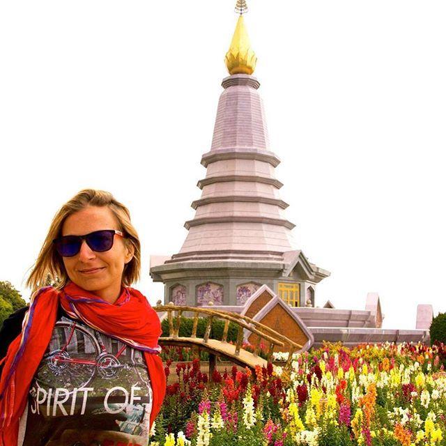 Sur le plus haut sommet de thailande. #mathailande #thailande #thailand #doiinthanon #chiangmai #temple #mytrip #fleur #flower