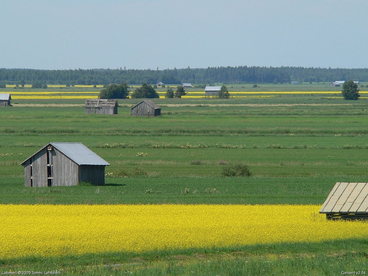 Latomeri. Ostrobotnia is called the Deep South of Finland. Huge farms, very religious, very patriotic.
