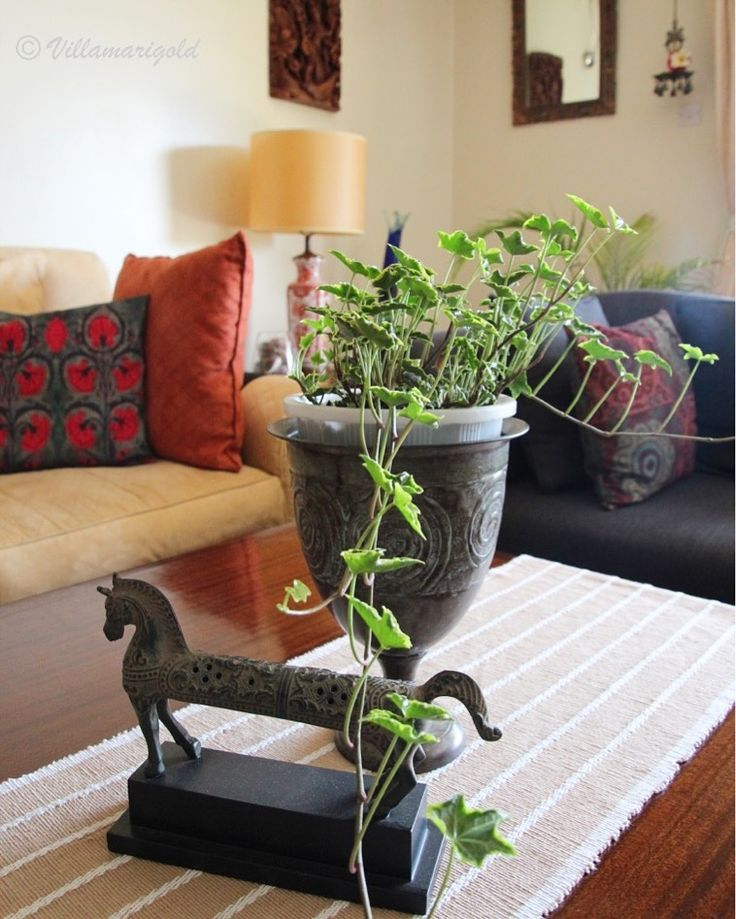 Living With Plants, Coffee Table Decor, Coffee Table