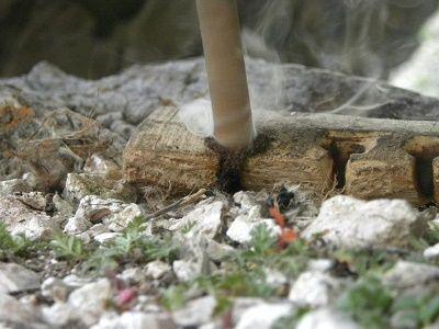 Particolare del trapano in rotazione sulla base di legno.