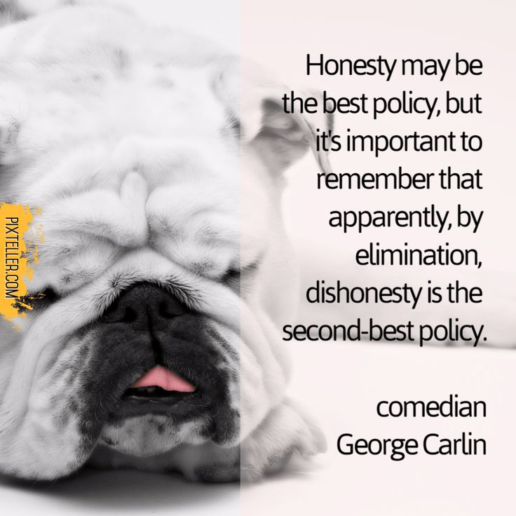 Honesty may be the best policy, but it's important to remember that apparently, by elimination, dishonesty is the second-best policy.  comedian George Carlin