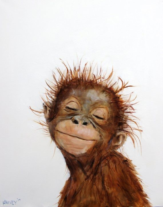 Little Orangutan 2 Print On Canvas Dibujos Bonitos De Animales Fondos Animales Fondos De Pantalla Animales