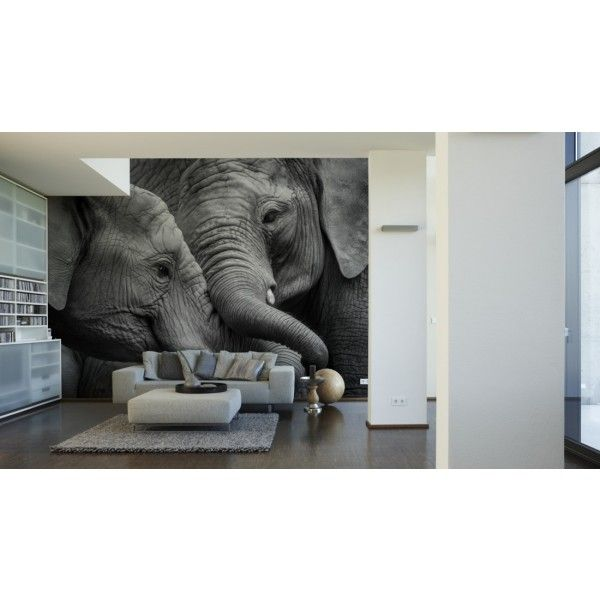 papier peint xxl digital architects paper el phants elephant black white http www. Black Bedroom Furniture Sets. Home Design Ideas