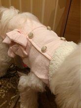 Tienda Online Pajaritas de La Princesa Encantadora Downs Chaquetas de Cuello Grueso Chihuahua Yorkshire Otoño Invierno Abrigos Ropa para Perros Mascota Gato 17ZF60 | Aliexpress móvil