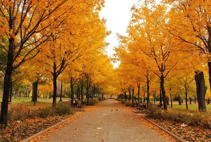 Et l'automne, c'est encore pire.