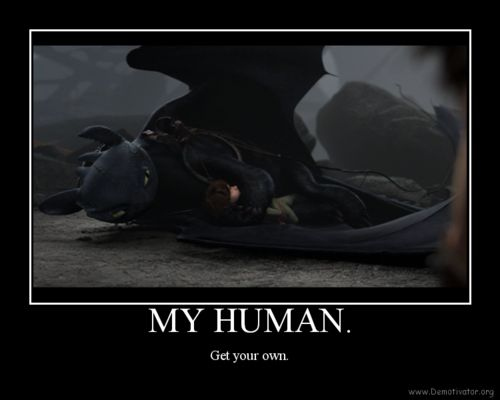 aww!! Hiccup and Toothless! 10x better love story than Twilight