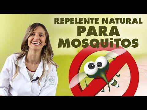 O cultivo de Plantas Repelentes é uma forma natural de proteger a sua casa e a sua família de insetos indesejados e da zika. Saiba quais são estas...
