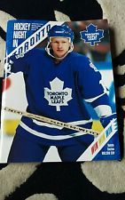 Toronto maple leafs v detroit redwings ice hockey programme.