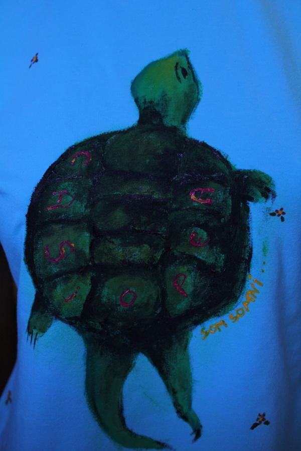T-shirts by Alicia Calero, via Behance  La tortuga Casiopea de Momo