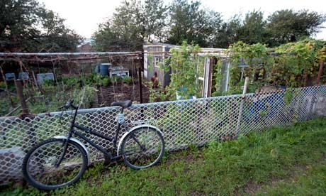 bicycle parked beside an allotment. Link to low maintenance allotment tips