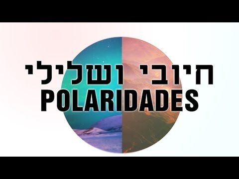 Polaridade na Natureza - YouTube