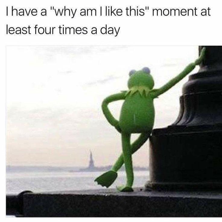 39 Best Muppet Quotes Lol Images On Pinterest: 318 Best Kermit-Miss Piggy-Bacon Images On Pinterest