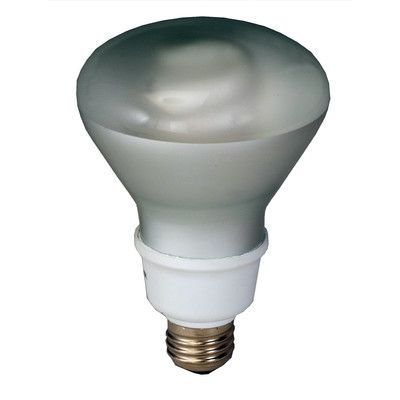 Royal Pacific Compact Fluorescent Light Bulb Wattage: 23W