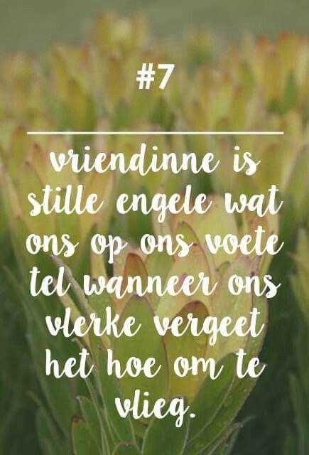 Vriendinne is... __[Fynbos Vrou/FB] #7 #Afrikaans #Friends