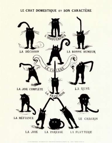 the many moods of our feline friends... French Caractere (Le Chat Domestique) Art Print