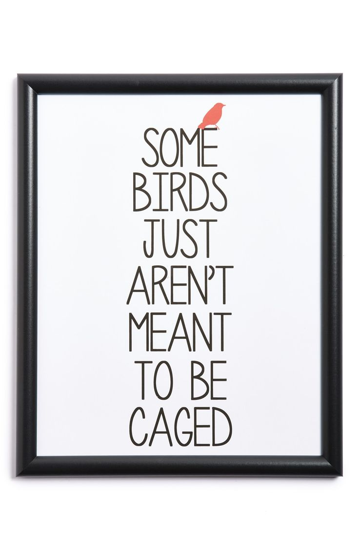 Some birds just aren't meant to be caged...