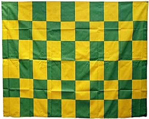 Green Gold Chequered Protest Flag