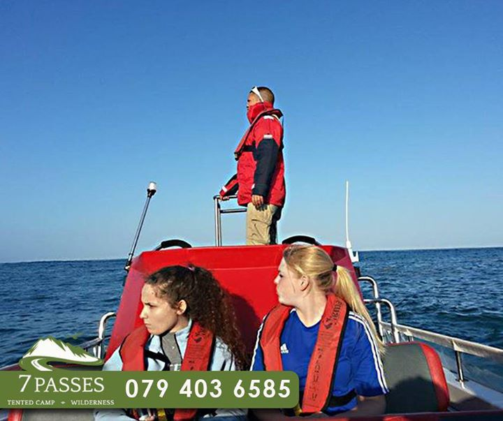 If you are busy planning all your outings while staying at #7passes, why not enjoy some fun on the sea with a boat trip among the shore lines of #Wilderness.