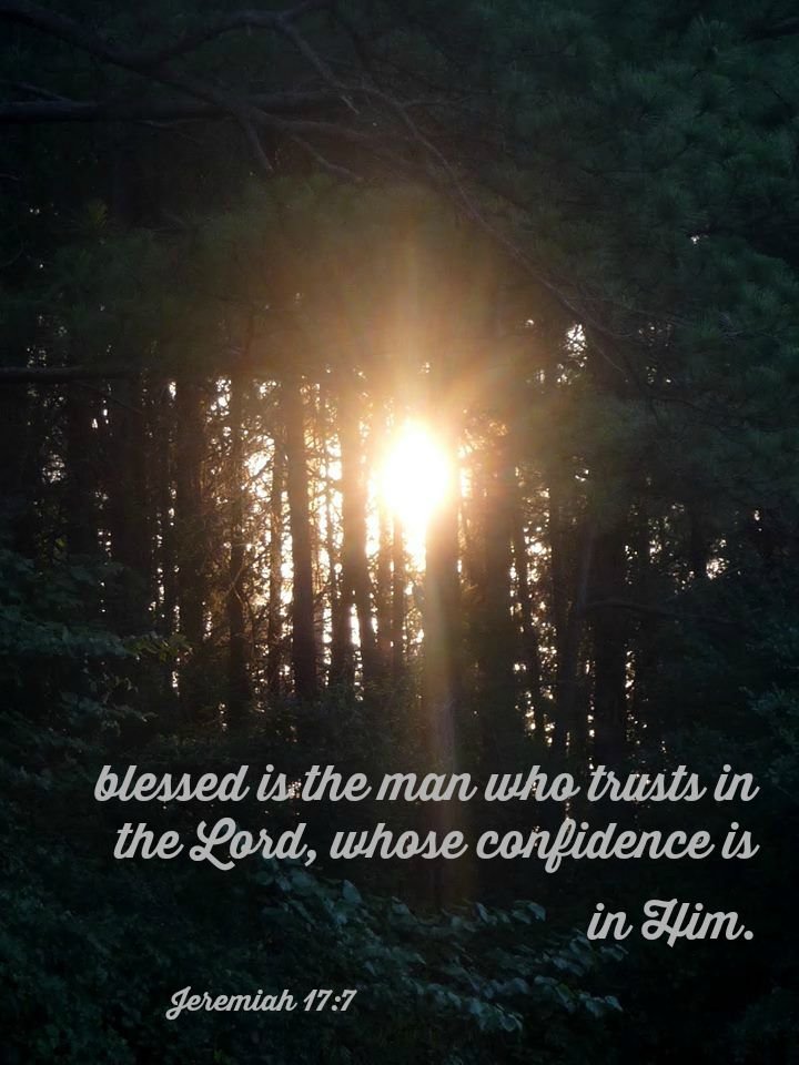 Jeremiah 17:7  BLESSED is the man who trusts in the LORD