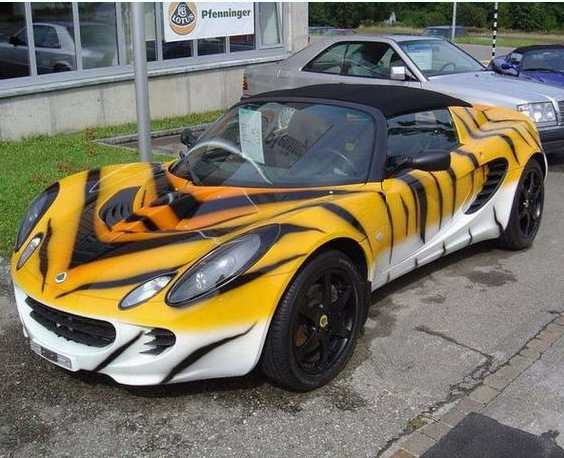 CUSTOM AUTO PAINT - TIGER STRIPES! | Awesome | Pinterest ...