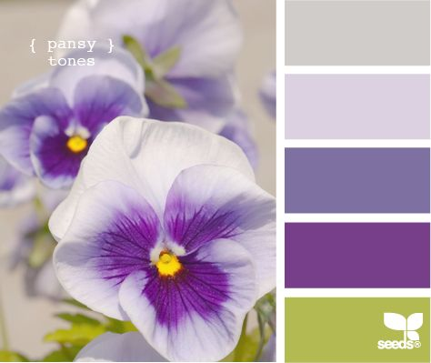 alternate shades of purple, green, and gray- and of course would need to add the orange to this too