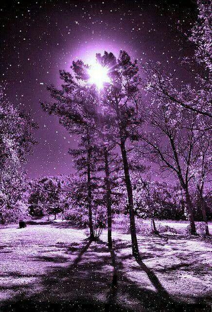 Esta foto representa la belleza en el paisaje como si fuera el invierno blanco pero en violeta. Se ve que es de noche por la luna blanca, satisface una sensación de este color.