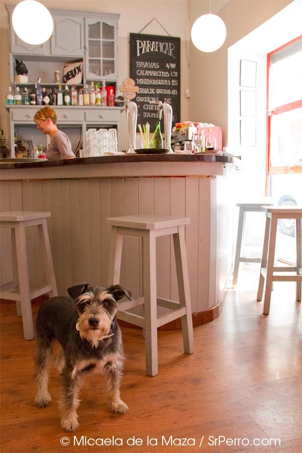 La Gustava, ¿cómo no engancharse a este lugar? Son simpáticos, se come de lujo a un precio muy razonable, es bonito y además puedes ir con perro.   Muy fan de La Gustava.    http://www.srperro.com/content/la-gustava