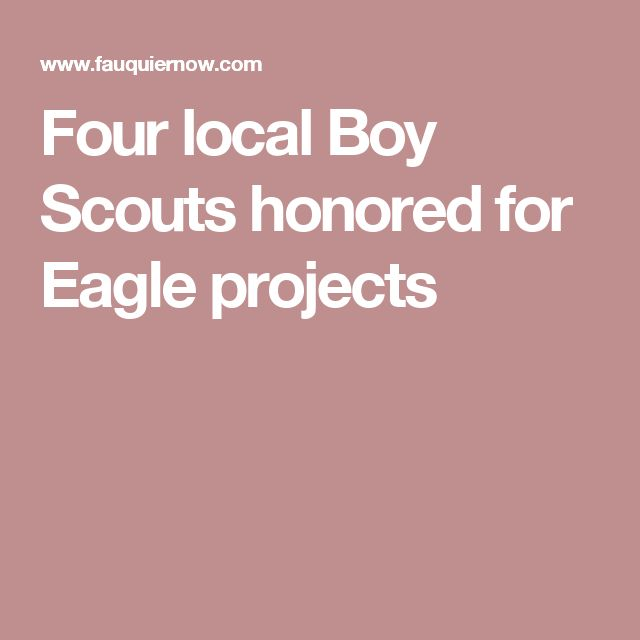 Four local Boy Scouts honored for Eagle projects
