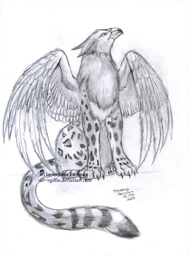 Griffin Drawings | More from ~ silvergriffin | WOWOW in ...