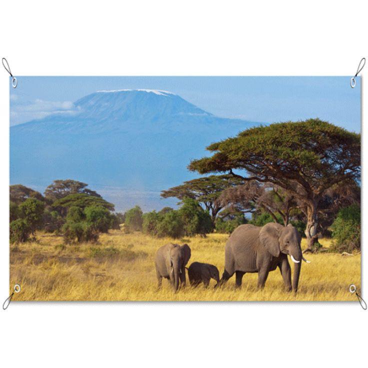 Tuinposter Olifanten | Maak je tuin nog mooier met een weerbestendige tuinposter van YouPri. Bewezen kleurbehoud! #tuinposter #tuindoek #tuin #poster #weerbestendig #kleurbehoud #frontlit #goedkoop #voordelig #spanners #ogen #olifanten #afrika #savanne #landschap #afrikaans #dieren #dier #natuur #wildernis