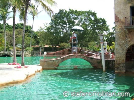 17 Best Images About Coral Gables Fl On Pinterest Fitness Classes Pools And Summer Jobs