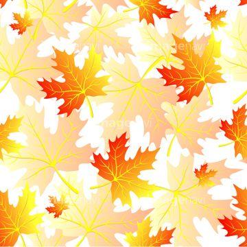 秋のイメージ総特集2011 - 秋のイラスト 「秋の花のイラスト」のイラスト素材 - imagenavi
