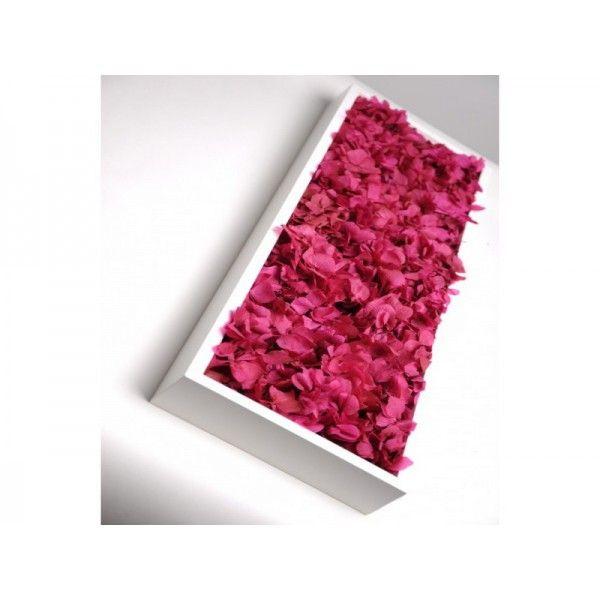Tableau végétal stabilise MeaMea 60 x 18 cm - Flora pink slim - Growshops
