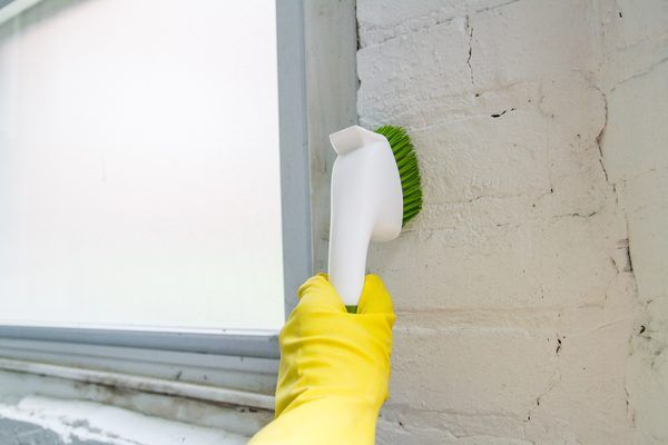 The darkness and humidity in the basement provide ideal conditions for mold, and it usually doesn't take a microscope to tell you have a problem; your eyes and nose are suitable tools. Concrete walls are not especially prone to mold and mildew -- which are words for the same thing. But even an inorganic material like concrete can become mildewed...
