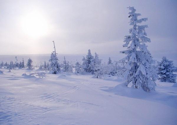 Talvimaisemat