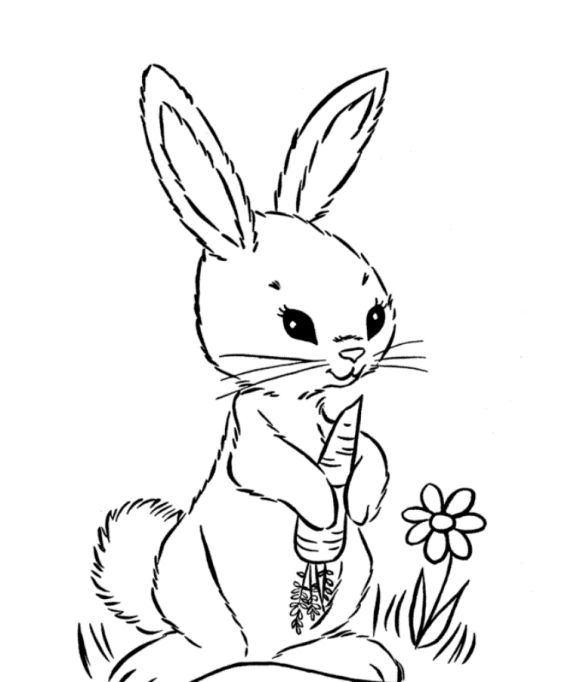 bunny holding a carrot coloring for kids find this pin and more on coloring animals by