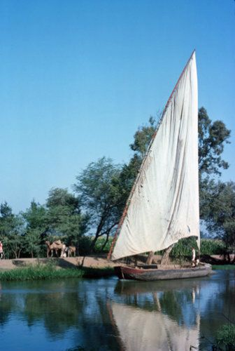 Egypt, Nile delta, irrigation canal and felucca