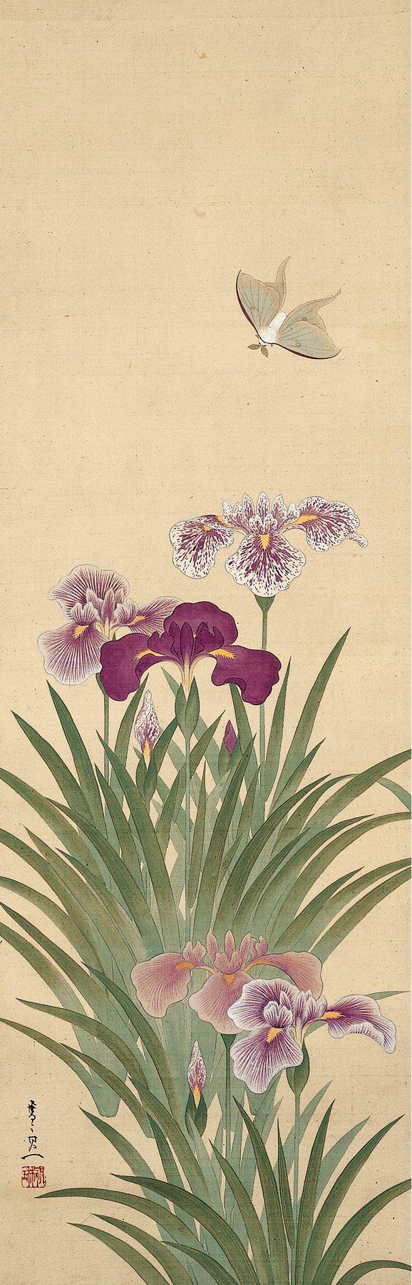Irises and Moth Suzuki Kiitsu (鈴木其一; 1796–1858)...
