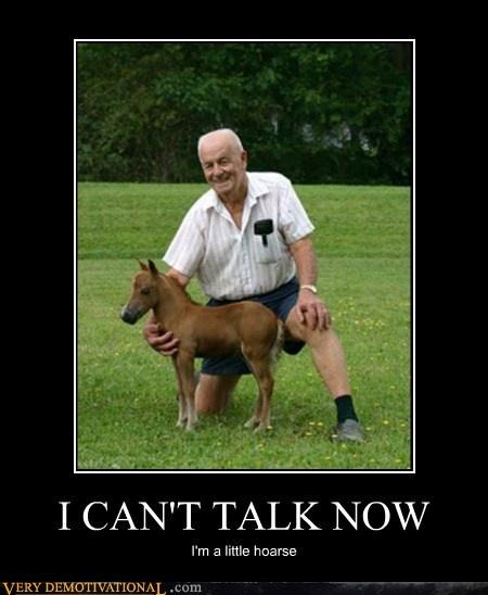 Horse jokes - photo#49
