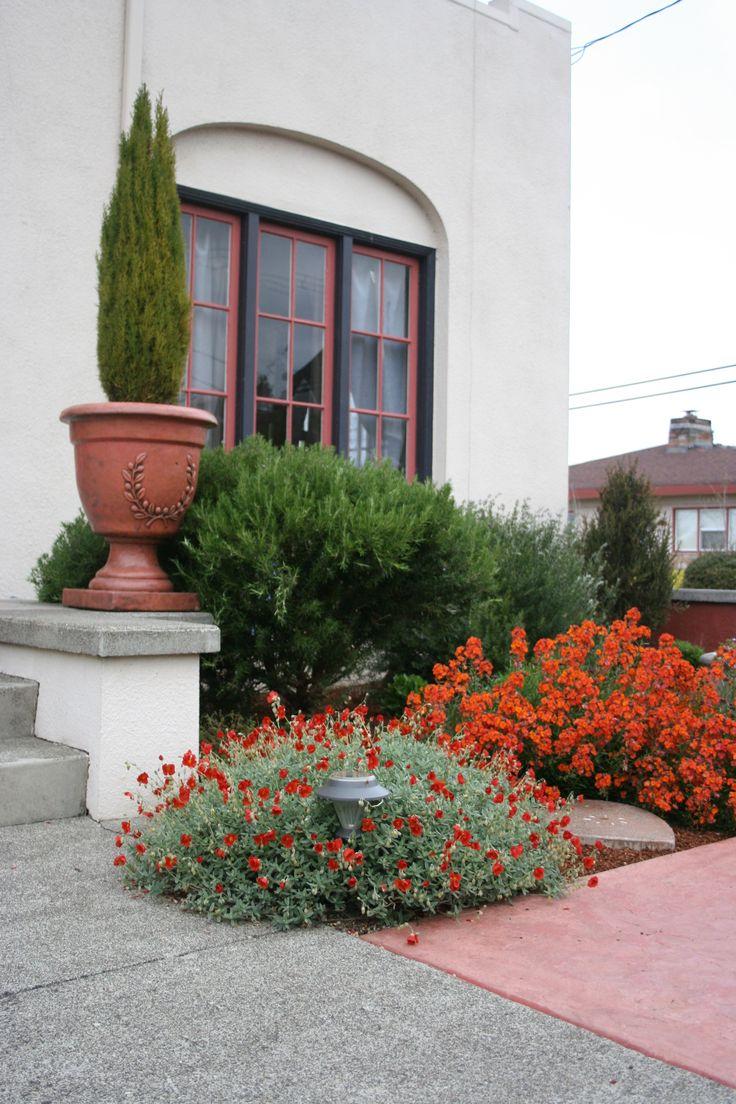 7 Hacks To Create A Mediterranean Style Garden: 73 Best California Mediterranean Gardens Images On