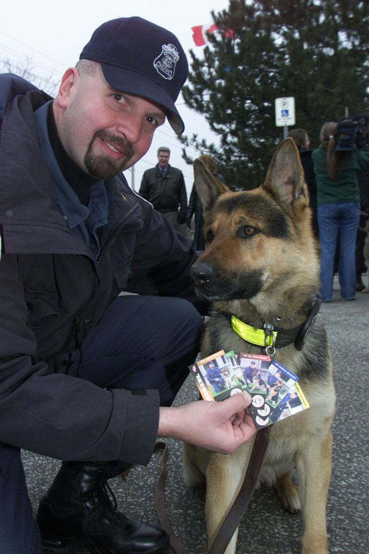 Windsor police mourn fallen dog Beezel