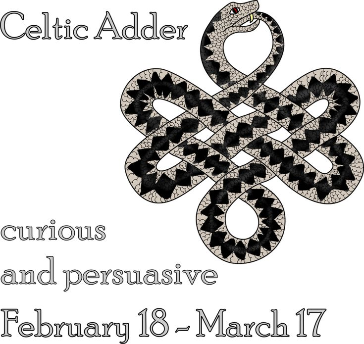 Astrology Celtic Symbols And Irish Astrology Zodiac Celtic Signs