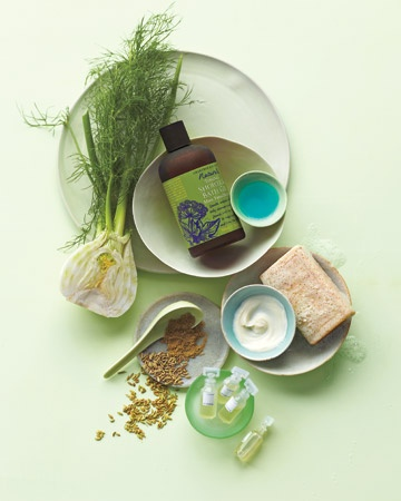 """Fennel    """"This root, with its slight licorice flavor, is especially good for sensitive skin; it decreases redness and irritation and can help minimize sensitivity caused by sun exposure, says dermatologist Leslie Baumann of Miami Beach, Florida.    Use it to...  Tighten: Crabtree & Evelyn Naturals Toning Shower and Bath Gel in mint, fennel, and ivy  Cleanse: Lather Gentle Eye Makeup Remover  Soothe: REN Calendula and Arctic Berry Ultracalm Cleansing Milk  Reduce puffiness: Dr. Hauschka Eye…"""